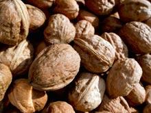Грецкие орехи снижают риск рака груди