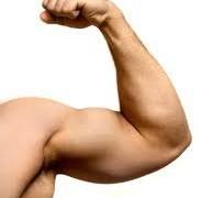 Горчица поможет накачать мышцы