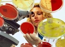 Появились болезни, которые не берут антибиотики
