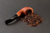 Никотин готовит курильщиков к употреблению кокаина