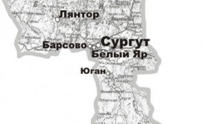 Возбуждено уголовное дело по факту вспышки сальмонеллеза в психдиспансере Сургута