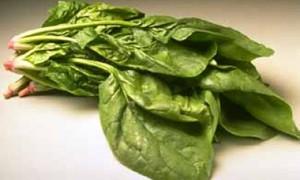 «Зеленая» защита от простуды – сельдерей и шпинат