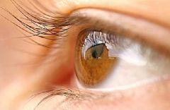 Здоровье глаз сказывается на интеллекте!