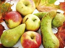 Ученые нашли продукты, снижающие риск диабета