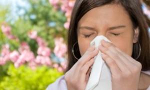 Аллергикам на заметку: календарь цветения растений