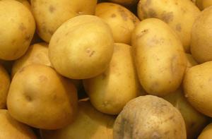 Картофель провоцирует рецидив рака груди