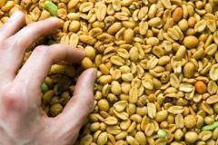 Пищевая аллергия или раздражение кишечника: как распознать?