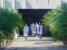 Куба приступает к тестированию на человеке вакцины против СПИДа