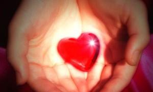 Аминокислота из куриного мяса защищает женское сердце от болезней