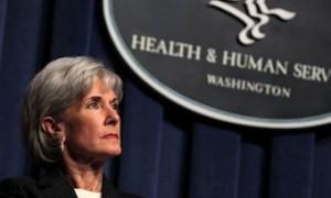 США признали необходимость публикации статей о птичьем гриппе