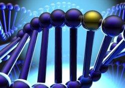 Мутация гена, рак груди и рак простаты: что общего