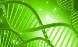 Генетические исследования помогли обновить классификацию рака груди