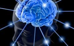 Ясность ума не менее важна, чем его величина