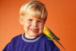 Ученые выяснили, что дети понимают все, что говорят взрослые, с 9 месяцев