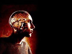 Как защититься от рака мозга?