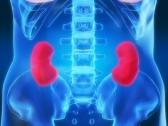 Иммунотерапия помогает при лечении идиопатической мембранозной нефропатии