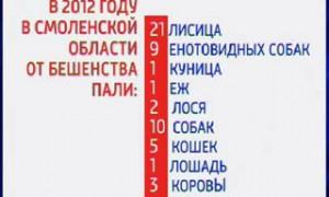 В Смоленской области зарегистрировано 53 случая заболевания бешенством