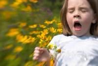 Как избежать аллергии в школе