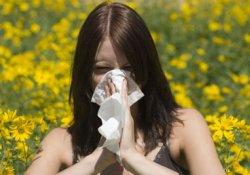 Аллергия портит жизнь: печальная статистика