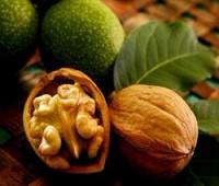 Грецкие орехи улучшают качество спермы у здоровых мужчин