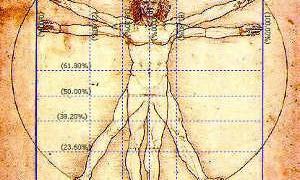 Ученые высчитали математическую формулу женской плодовитости