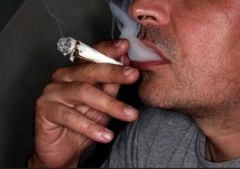 Курение марихуаны приводит к раку яичек