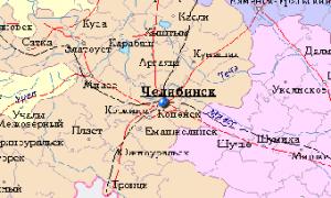 Литовская медицина поможет здравоохранению Челябинской области