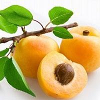 Улучшить здоровье человеку поможет абрикос