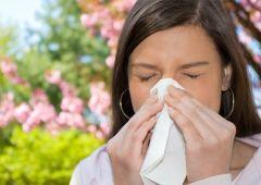 Что нужно знать об аллергии