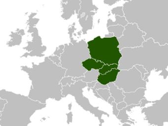 Медики четырех стран Центральной Европы впервые провели единую акцию протеста