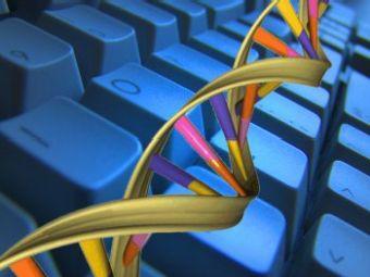 В Узбекистане планируют внедрить государственную геномную регистрацию