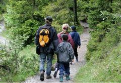 Прогулки на природе заряжают творческой энергией