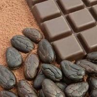 Британские ученые считают, что при хроническом кашле поможет черный шоколад