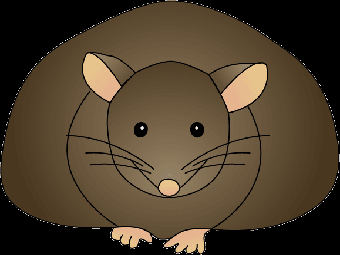 Трансплантация бурого жира способствовала снижению веса у мышей