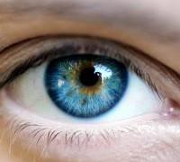 Перепрограммированием клеток глаза можно будет остановить развитие слепоты