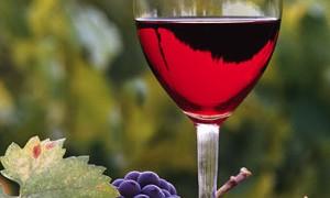 Красное вино может помочь в лечении многих заболеваний