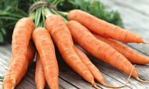 Почему нужно есть морковь, ее полезные свойства