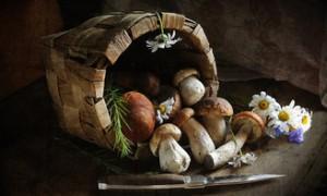 Укрепляем иммунитет с помощью грибов