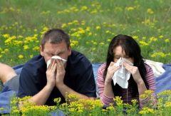 Сенная лихорадка – не повод испортить себе лето