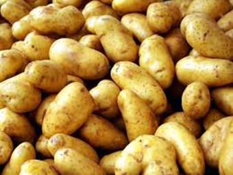 Картошка оказалась самым дешевым и полезным из овощей