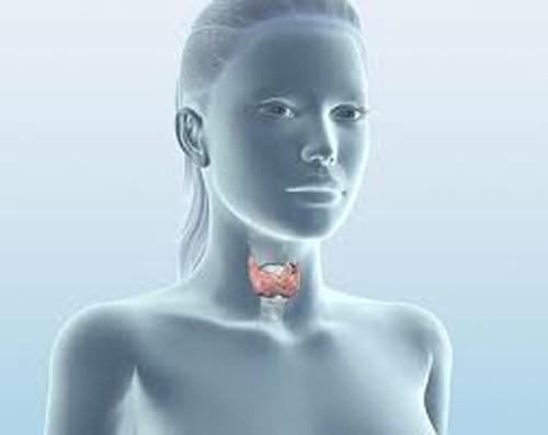 Ученые предлагают альтернативу традиционному лечению гипотиреоза