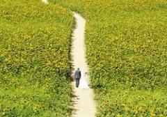 Прогулки помогут сократить риск диабета