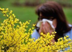 Ученые обещают новый метод лечения аллергии