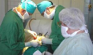 Ученые выяснили, почему хирурги оставляют в теле пациента посторонние предметы