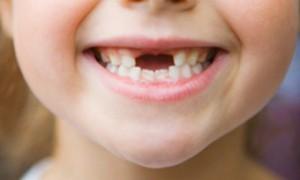 Китайцы предложили выращивать зубы из мочи