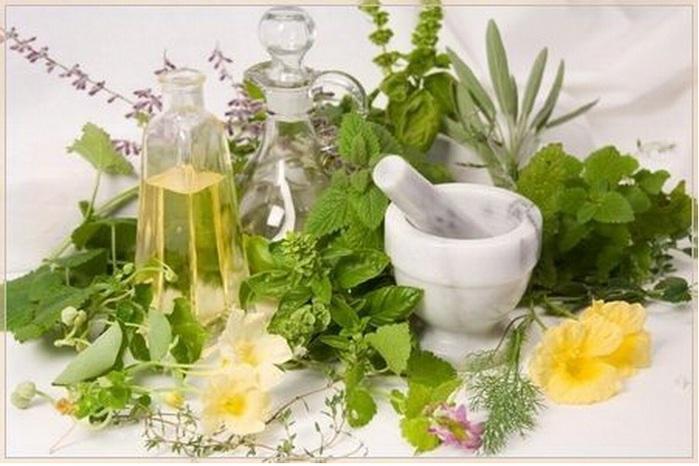 Лечение травами: самая древняя терапия