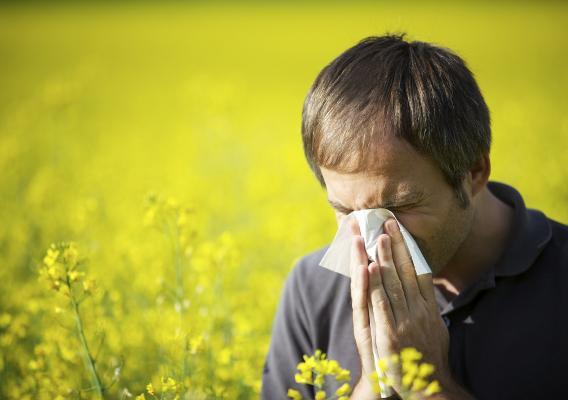 Как бороться с аллергическим насморком