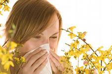 Разыскивая аллерген, не забудьте проверить компьютер