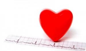Человеческое сердце – один из главных органов нашего организма