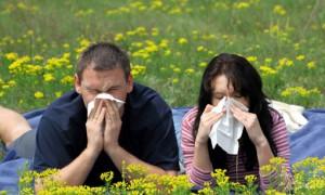 Продукты питания усугубляют течение аллергического ринита